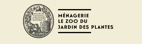 menagerie atelier animaux